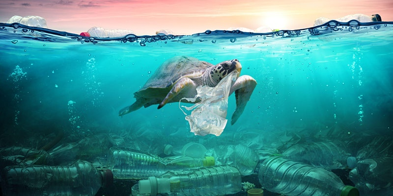 Responsibly Managing Plastics in your Organisation- Webinar