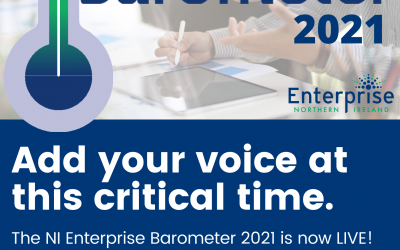 NI Enterprise Barometer 2021